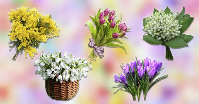 Zgjidhni një buqetë dhe zbuloni se çfarë do të sjellë pranvera për ju